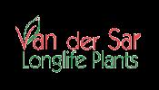 Westland Kasonderhoud - Van der Sar Longlife Plants-100